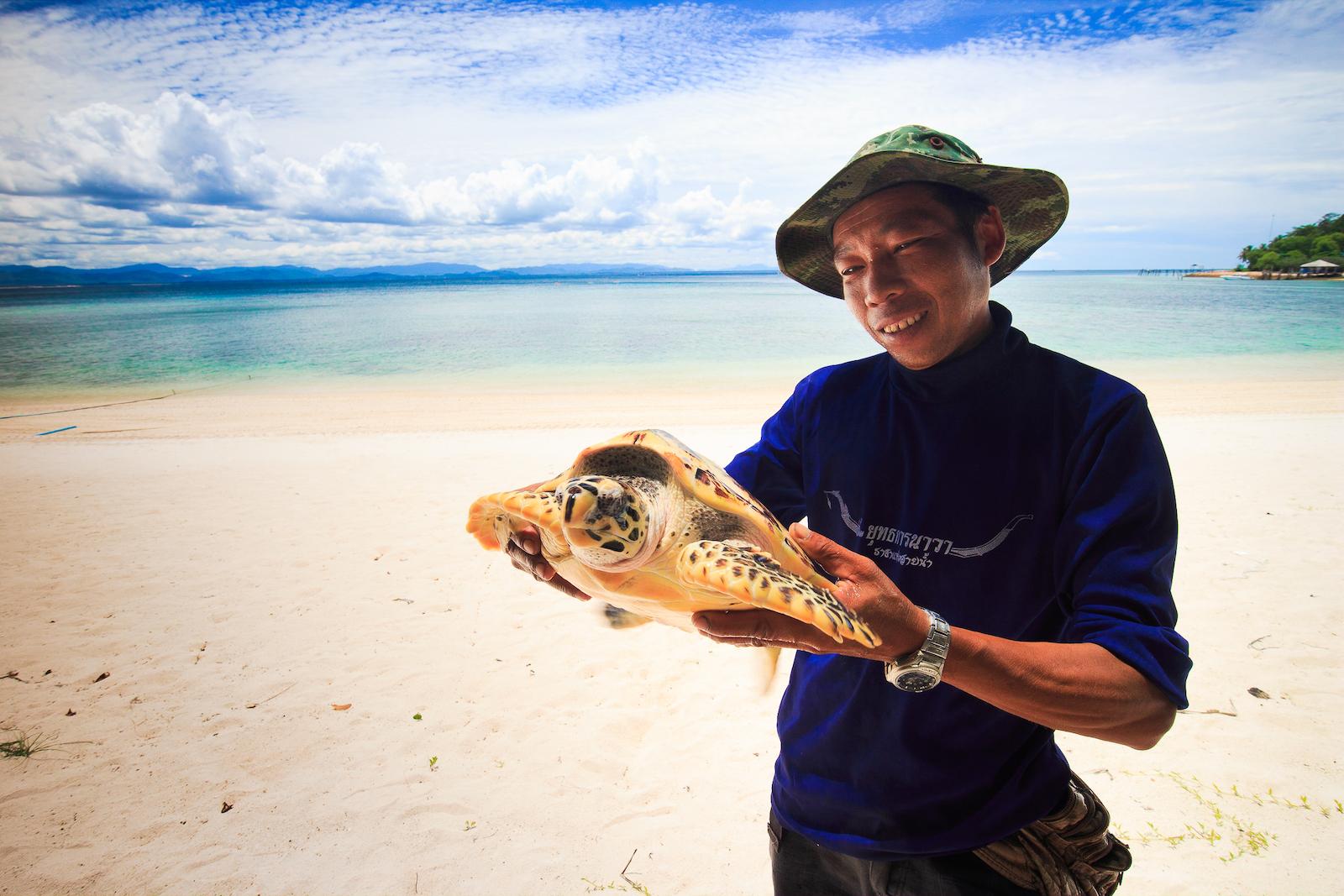 อนุรักษ์เต่าทะเล เกาะทะลุ