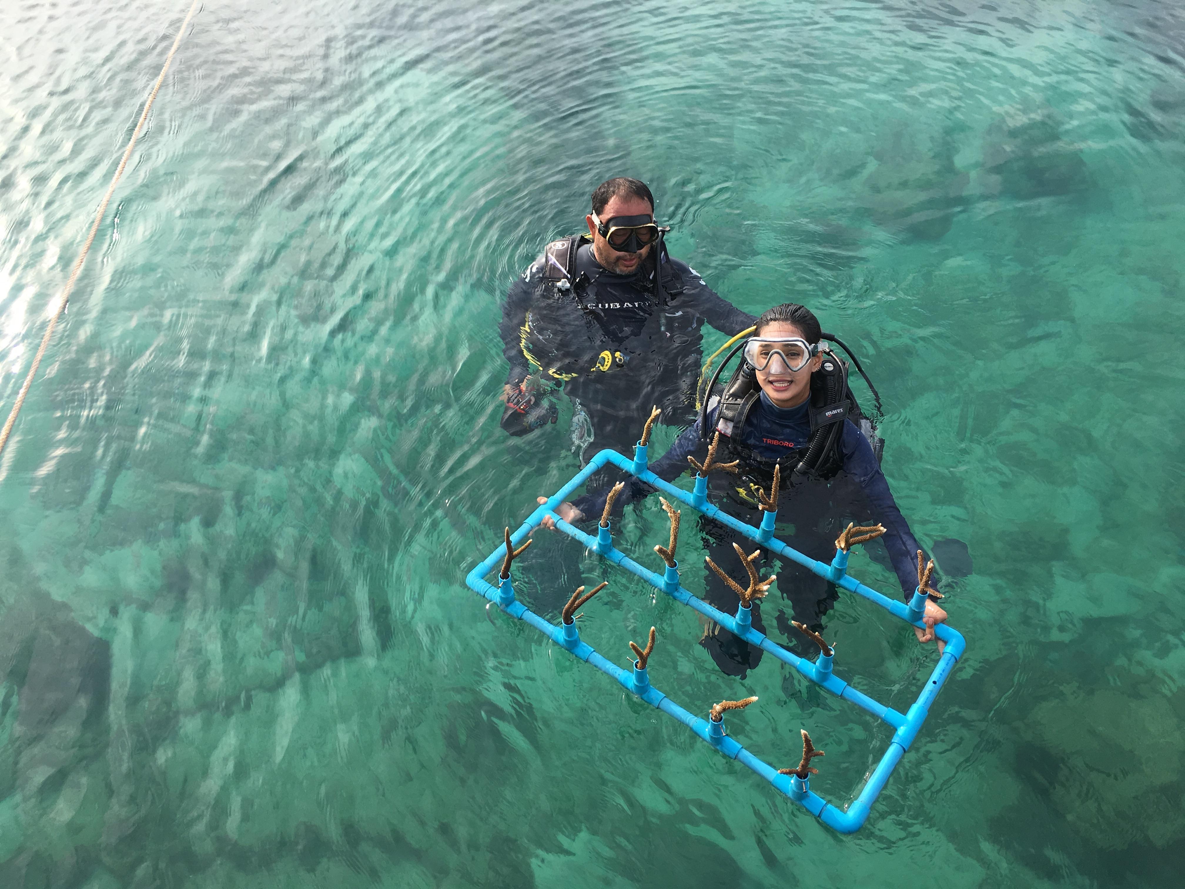 แปลงปลูกปะการัง เกาะทะลุ บางสะพาน
